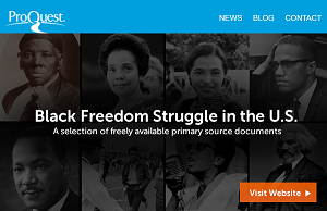 Black Freedom Struggle Website